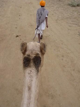 Kamelritt Rajasthan
