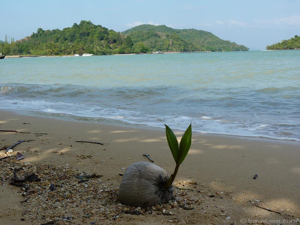 Strandfund auf Koh Yao Noi