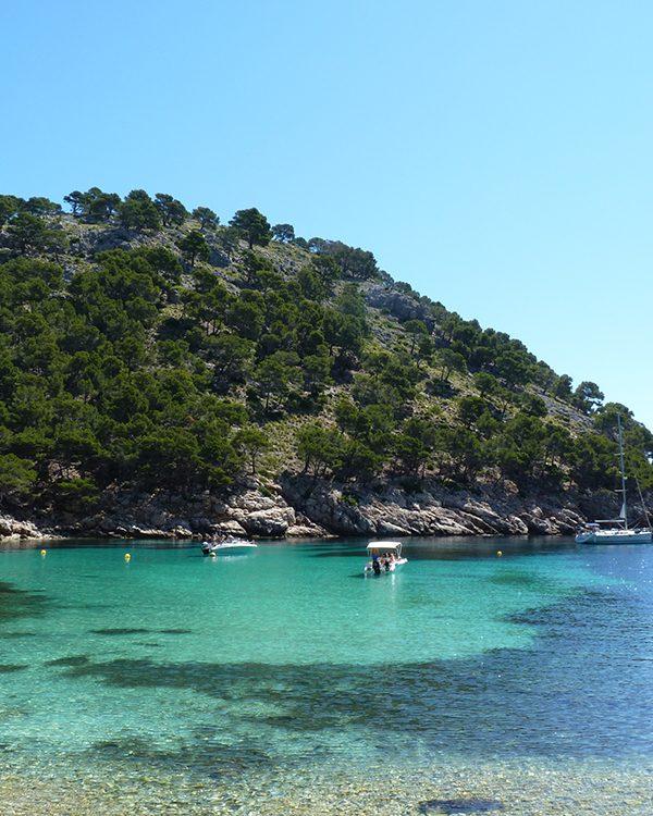 Traumstrand: Mallorca