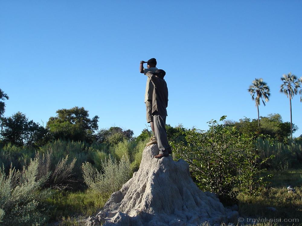 Guides im Okavango Delta Botswana
