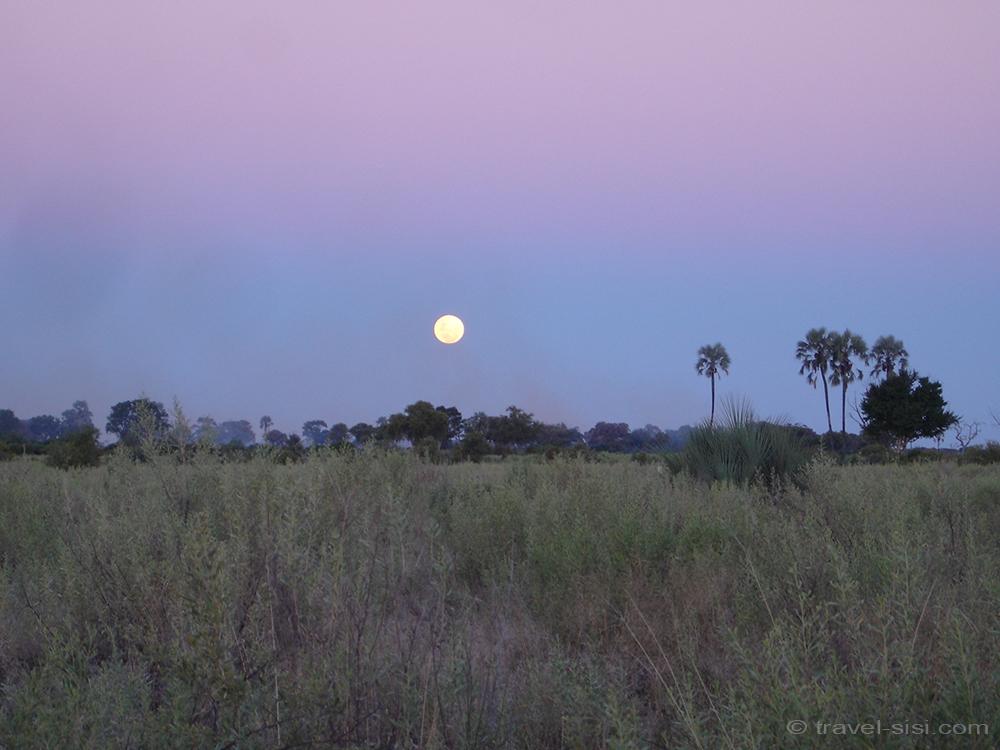 Sonnenuntergang Okavango Delta