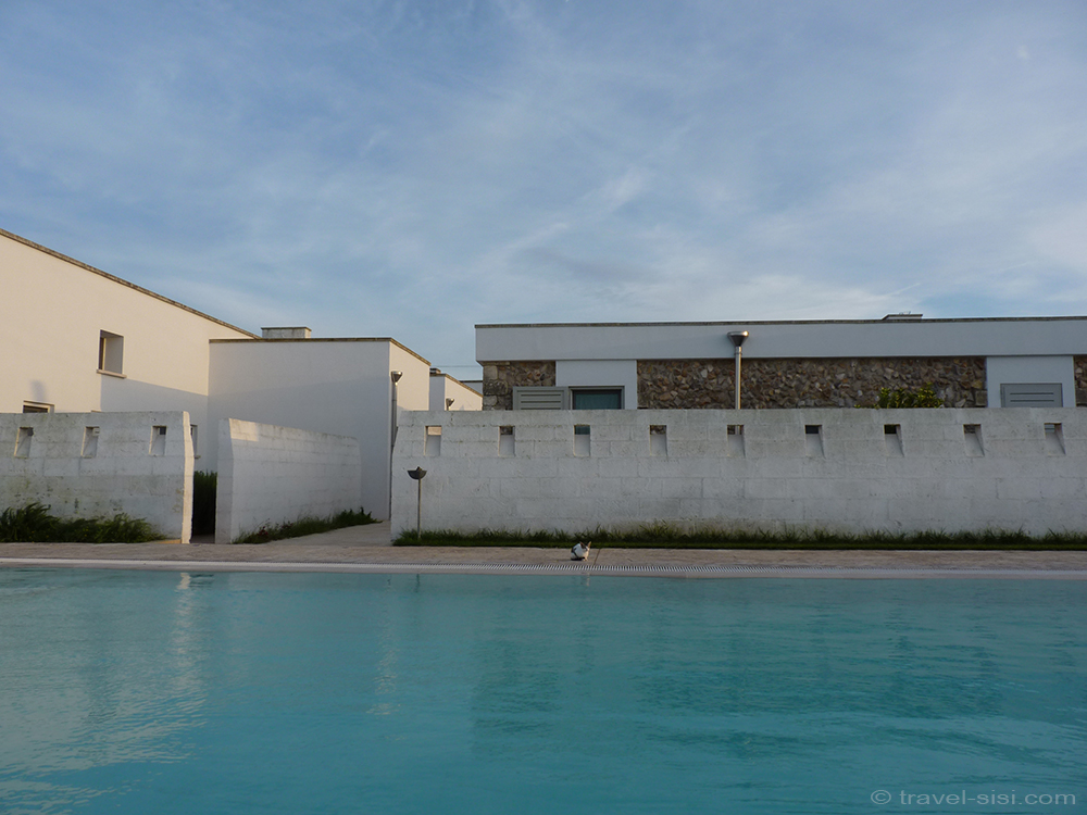 Pool mit Katze Masseria Giovanni Apulien