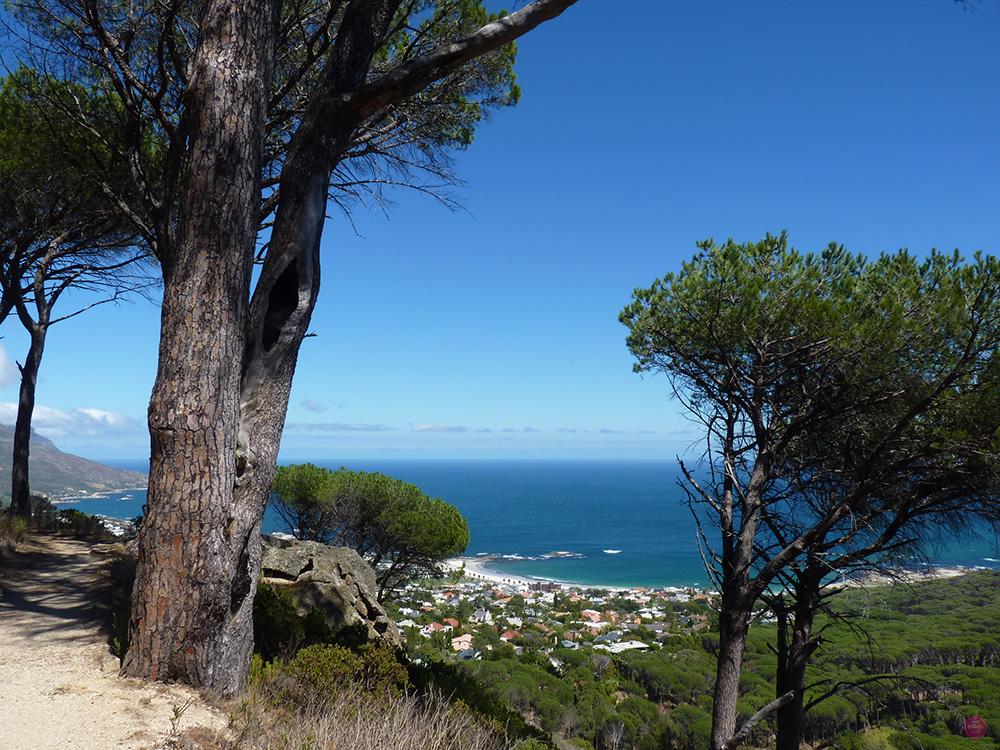 Blick vom Pipe Track auf Camps Bay