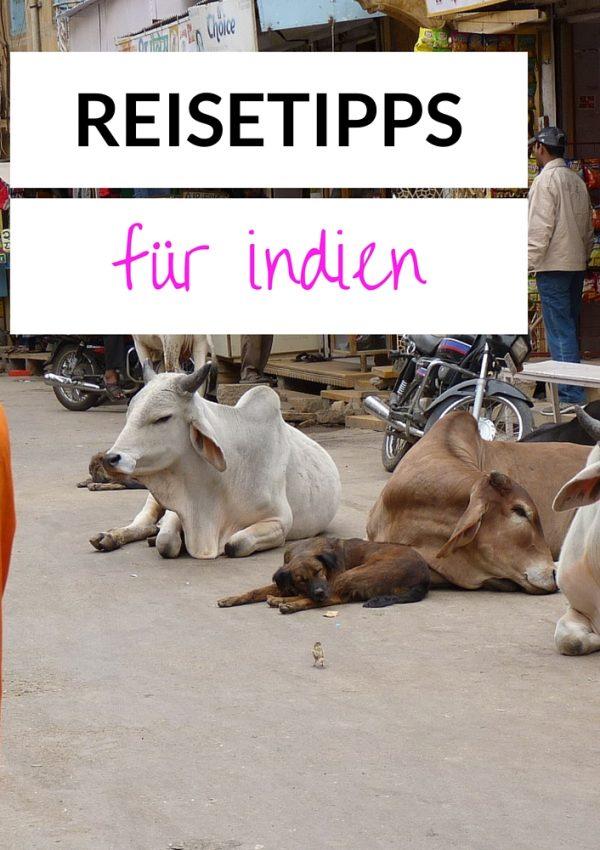 Pupsen beim Kochen erlaubt und andere Reisetipps für Indien