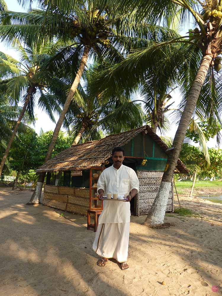 Ayurvedakur Kerala Chai unter Palmen
