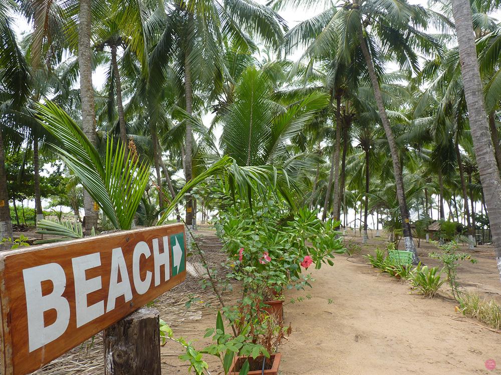 Ayurvedakur Kerala Strand