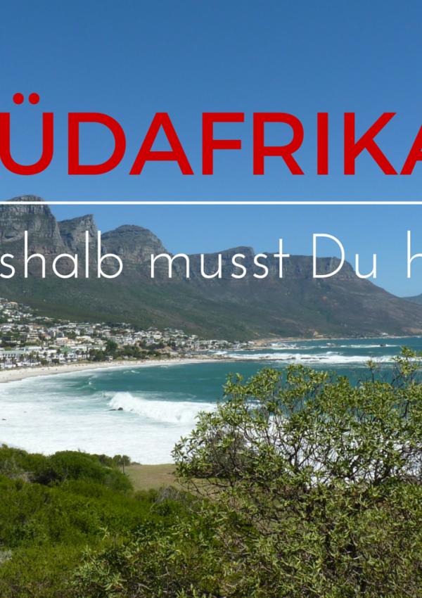 Warum sich eine Reise nach Südafrika lohnt