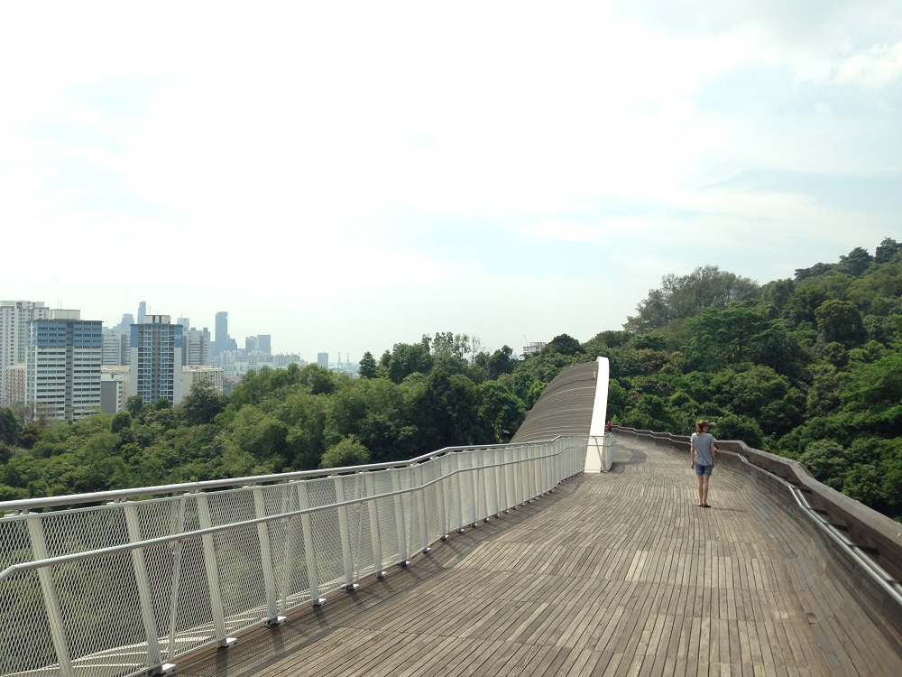Wanderung in Singapur Southern Ridges Henderson Waves Bridge