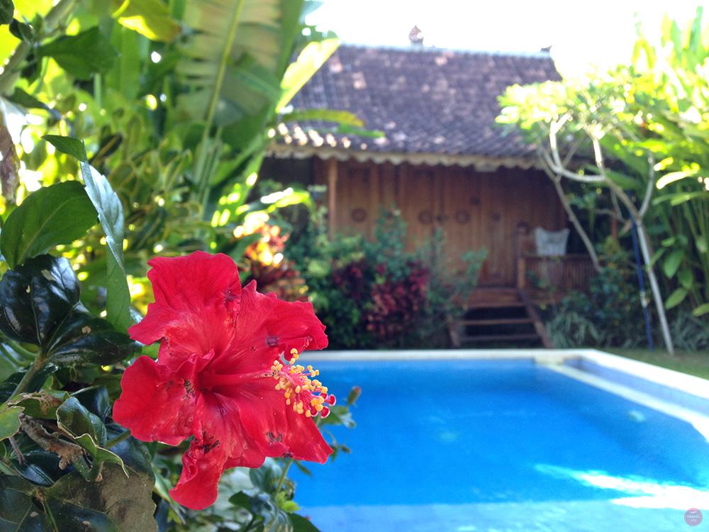 Mein perfekter Tag in Canggu Pool Villa Tara