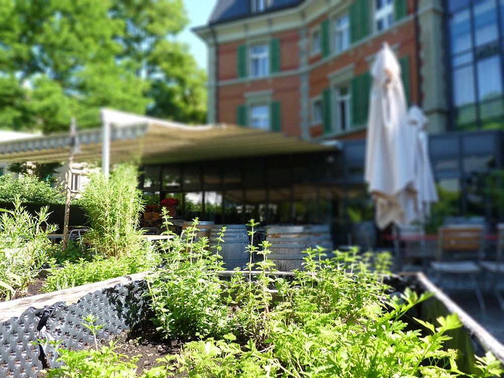 Hotel Alpenblick Bern Terrasse