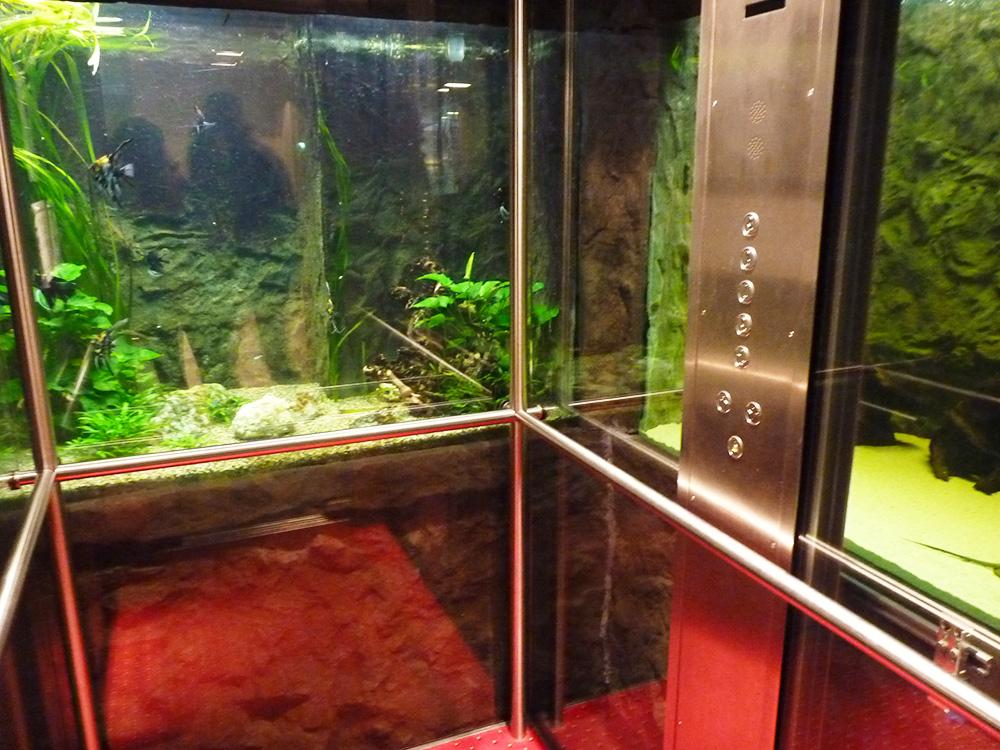 Märchenhotel Bellevue Aquarienlift