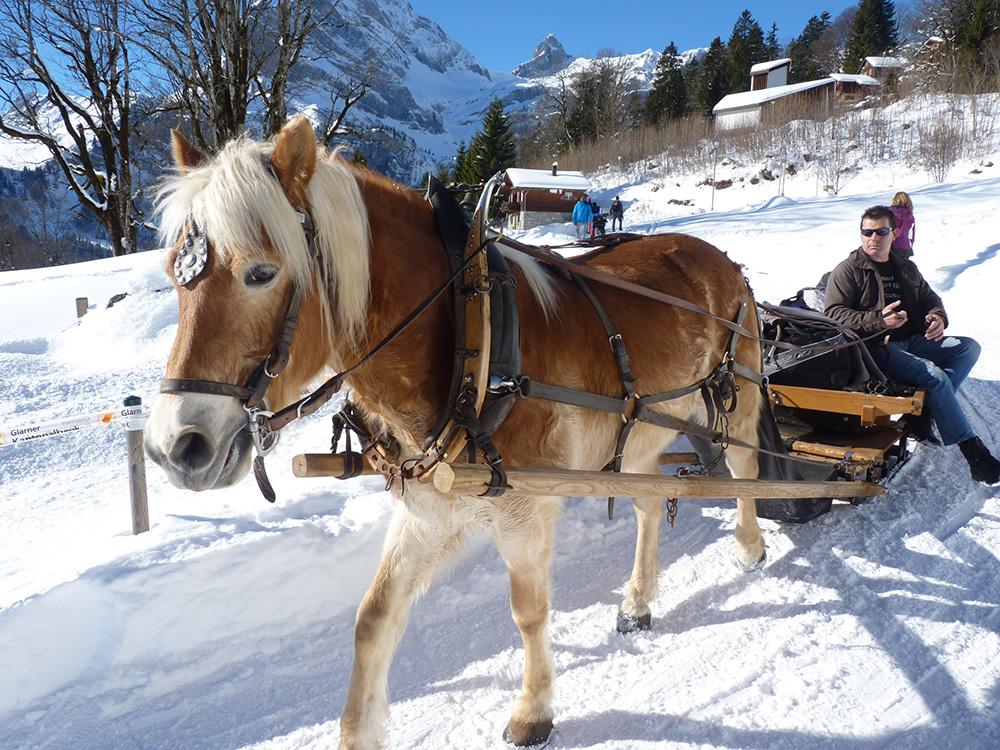 Märchenhotel Bellevue Pferdekutsche