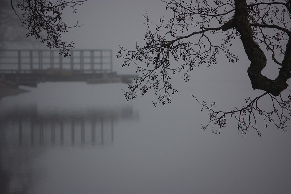 Reisetipps für den Schwarzwald im Winter Titisee im Nebel