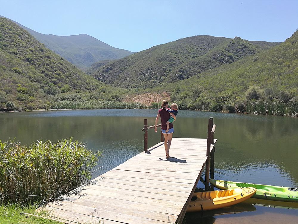 Damm zum Schwimmen im Africamps at Pat Busch in Robertson