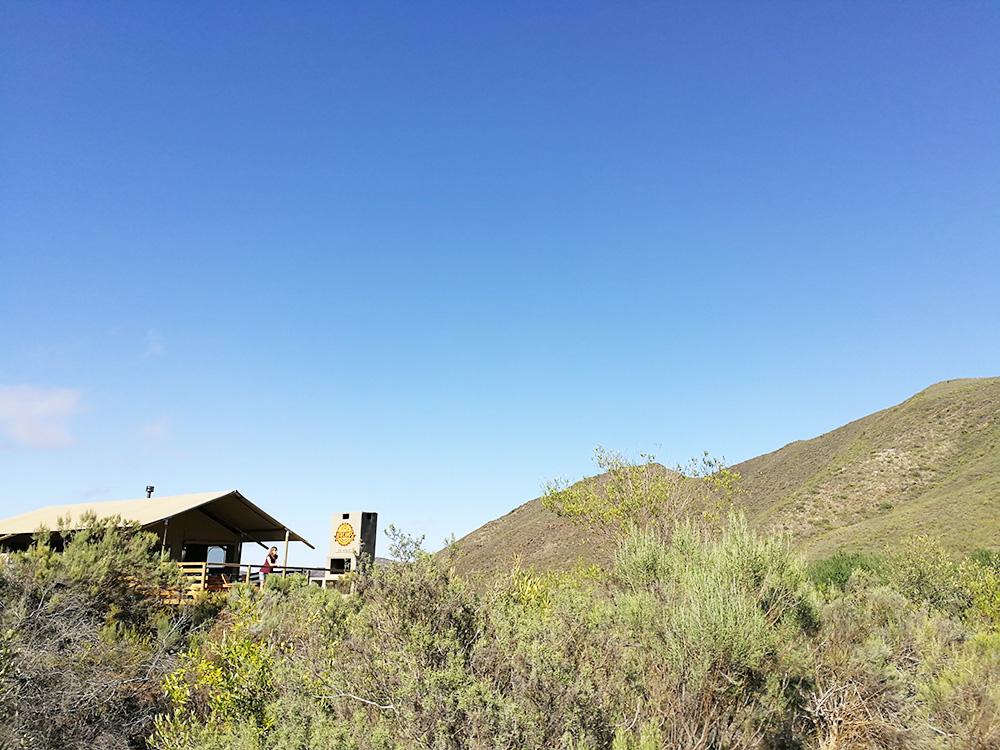 Die Aussicht geniessen vom Africamps at Pat Busch in Robertson