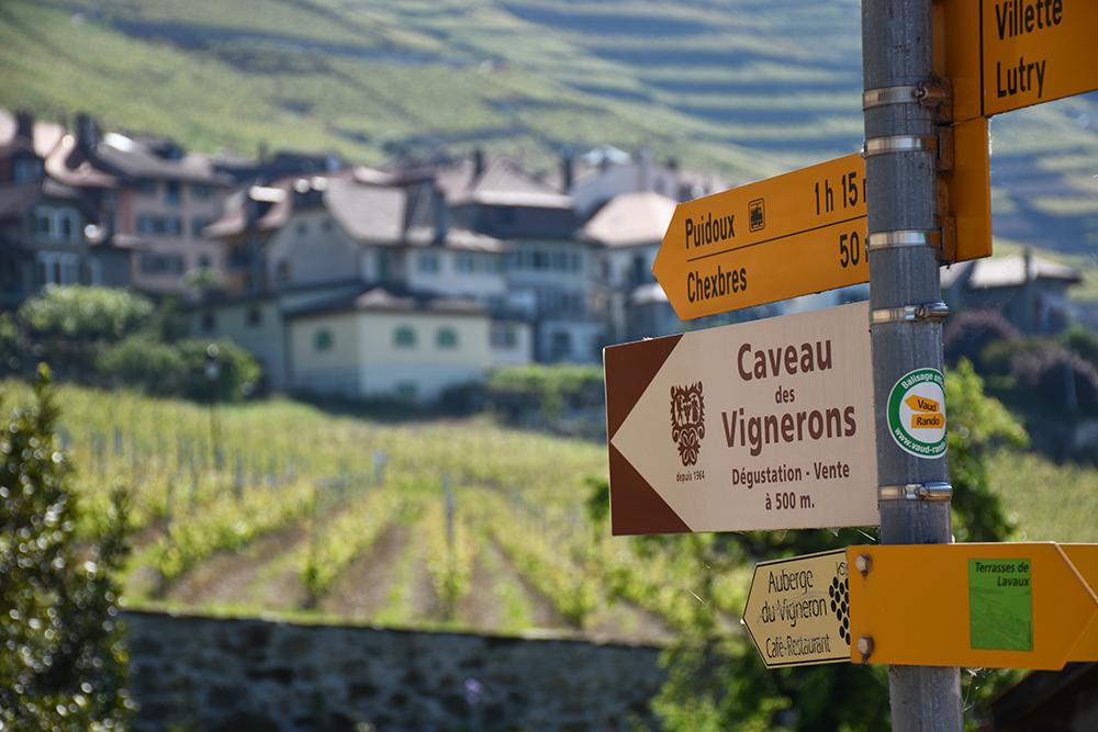 Hotel Lavaux Wanderwege durch das Weingebiet von Lavaux gleich beim Hotel