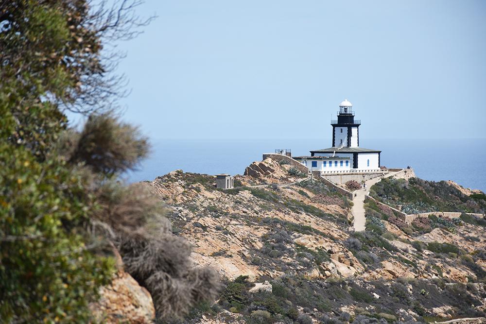 Reisetipps Korsika der Leuchtturm auf der Halbinsel Revellata