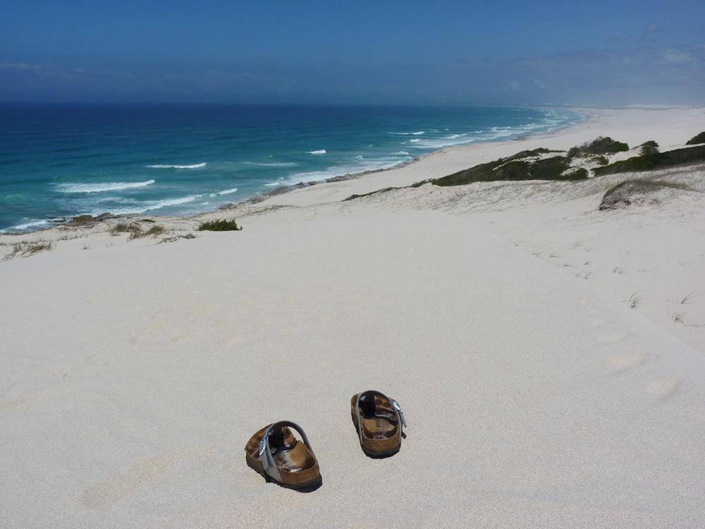De Hoop Nature Reserve Sanddünen soweit das Auge reicht