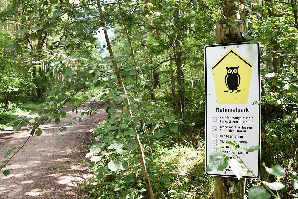Radtour Müritz Nationalpark Eingang in den Park