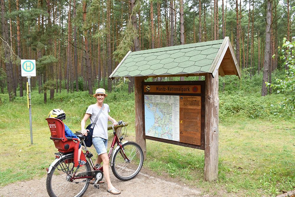 Radtour Müritz Nationalpark perfekter Familienausflug
