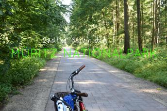 Radtour im Müritz-Nationalpark