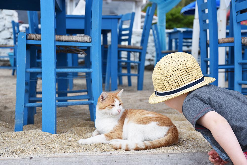 Reisen mit Kleinkind Kinder lieben Tiere