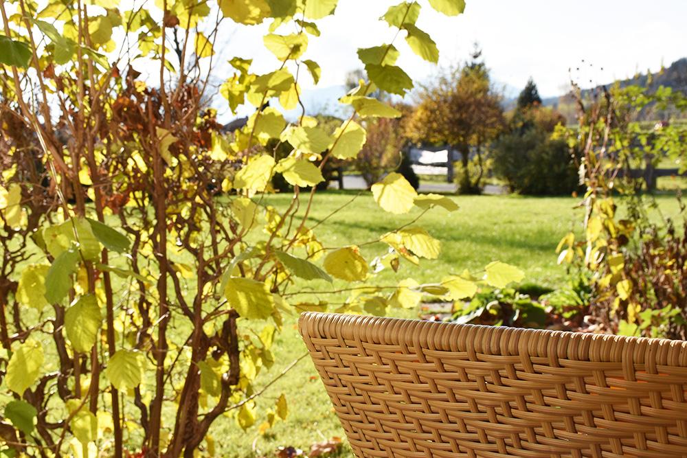 Familotel Landgut Furtherwirt Ausblick von der Terrasse in den Garten