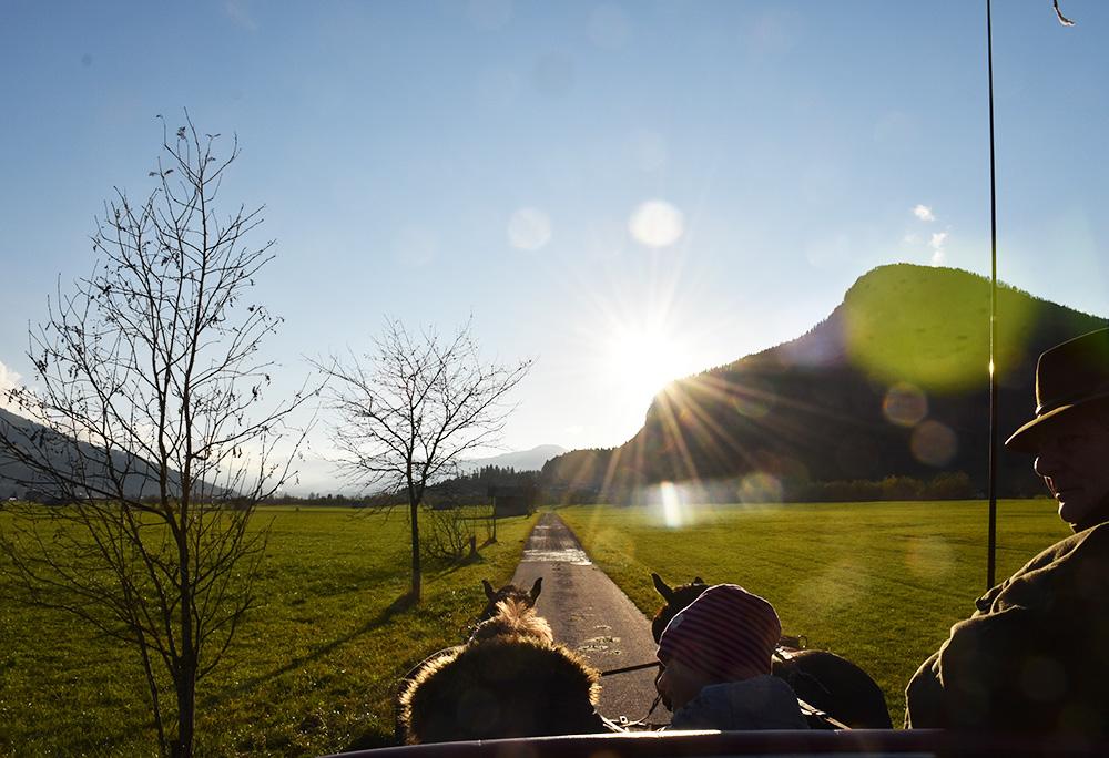 Familotel Landgut Furtherwirt Kutschenfahrt