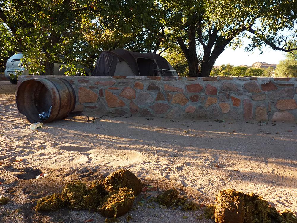 Wie Namibia mein Leben veränderte Besuch eines Elefanten beim Campen