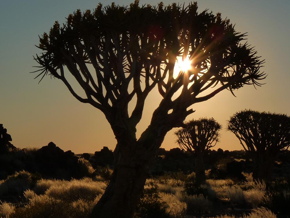Wie Namibia mein Leben veränderte Sonnenuntergang in Namibia