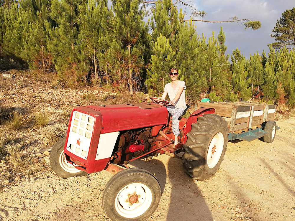Old Mac Daddy Elgin Südafrika Travel Sisi und kleiner Globetrotter fahren Traktor
