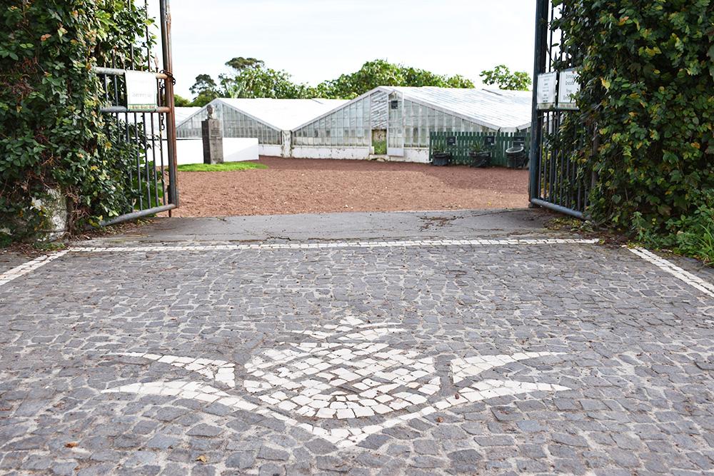 São Miguel Azoren Reisetipps Eingang Ananasplantage Arruda