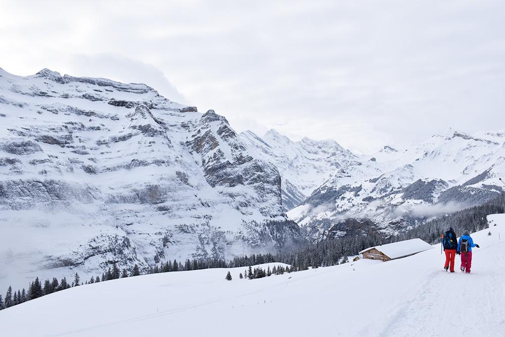 Reisetipps Wengen unterwegs mit Jack Daniel's Winterwanderung von der Kleinen Scheidegg nach Wengen