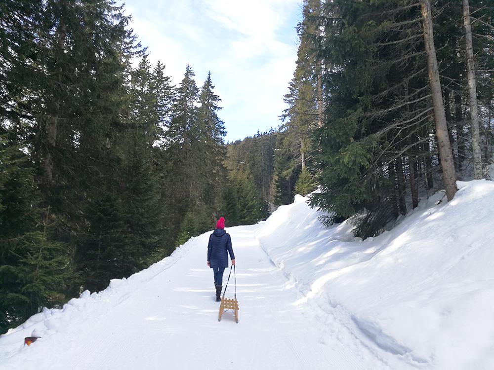 Hoteltipp Mathon Graubünden Pensiun Laresch Schlitteln im Naturpark Beverin