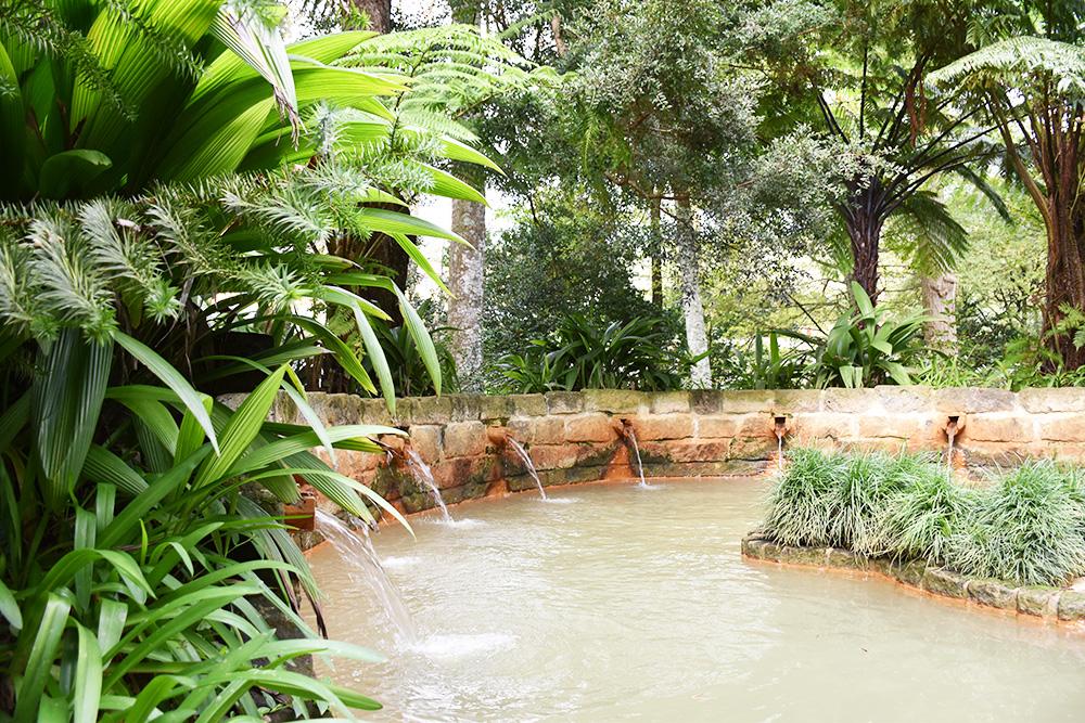 Reisetipps Furnas São Miguel Azoren kleiner Pool im Parque Terra Nostra