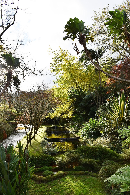 Reisetipps Furnas São Miguel Azoren tropische Pflanzenwelt im Parque Terra Nostra