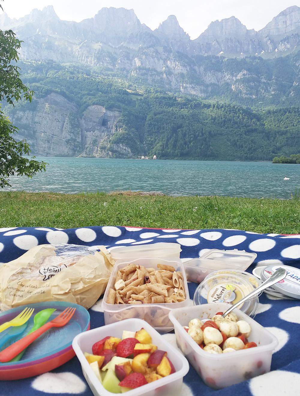 Badestellen am Walensee Picknick in Mols mit Blick auf die Churfirsten