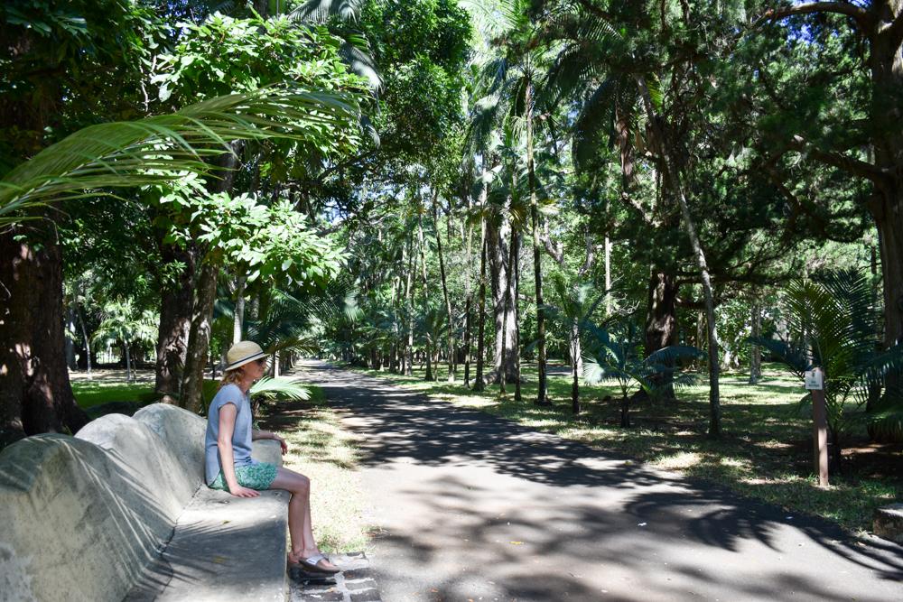 Sehenswürdigkeiten Mauritius meine 10 Highlights Botanischer Garten Pamplemousses