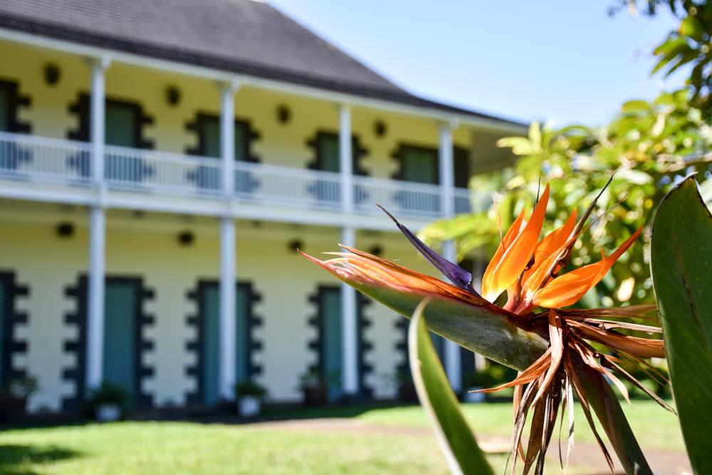Sehenswürdigkeiten Mauritius meine 10 Highlights Kolonialvilla im Botanischen Garten