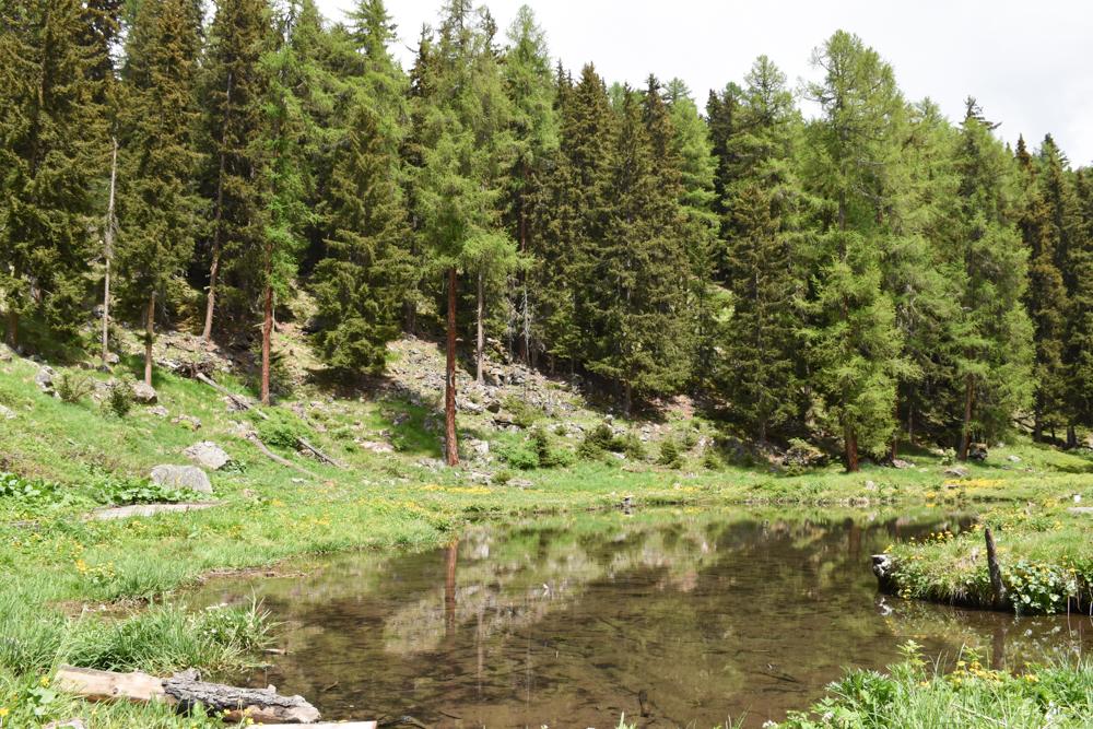 Guarda und der Schellen-Ursli-Weg Lajet