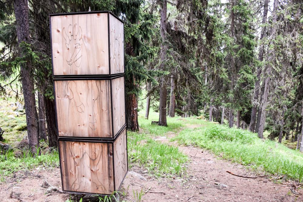 Guarda und der Schellen-Ursli-Weg Tiere im Wald