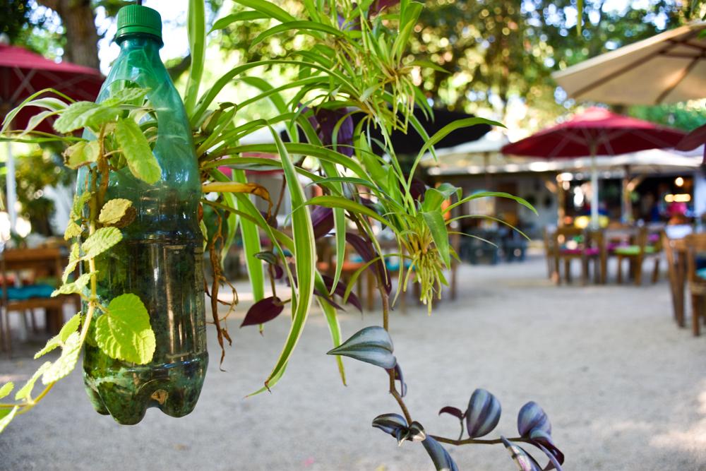 Restauranttipps Mauritius Vanilla Village