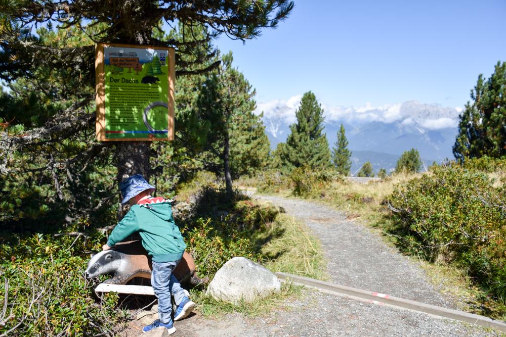 Ötztal mit Kind Themenweg Auf den Spuren der Wildtiere Almenregion Hochoetz