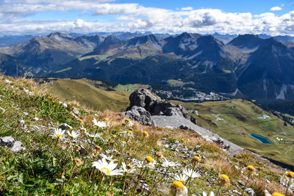 Familienausflug Arosa Bärenland Aussicht Weisshorngipfel