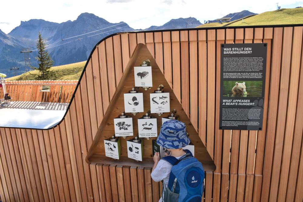 Familienausflug Arosa Bärenland Informationen über Braunbären auf der Besucherplattform