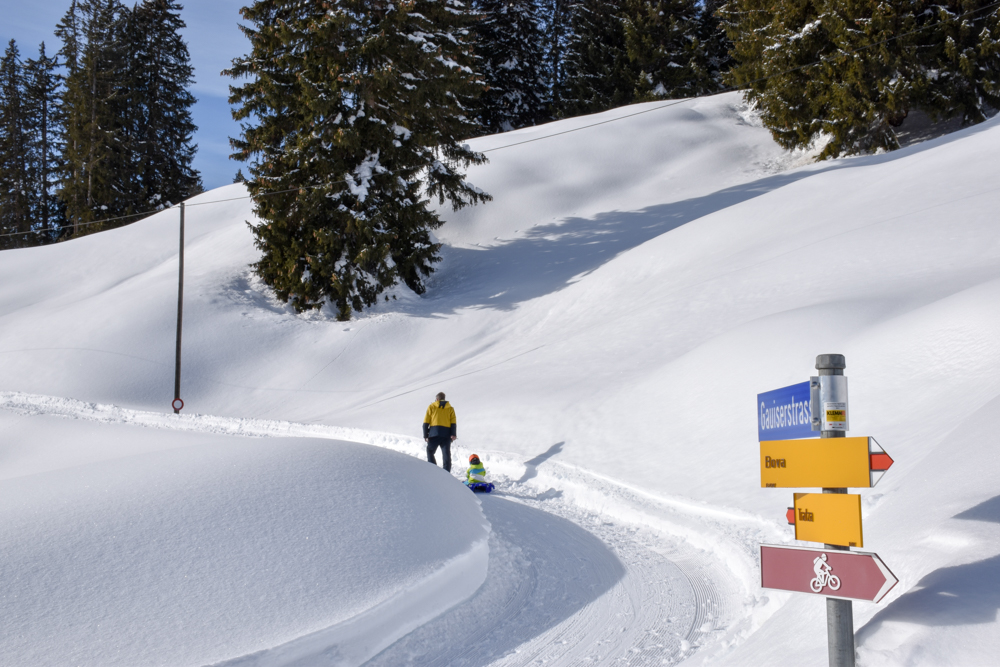 Schlittelweg Pany Prättigau Schweiz Abzweigung zum Tratza-Beizli