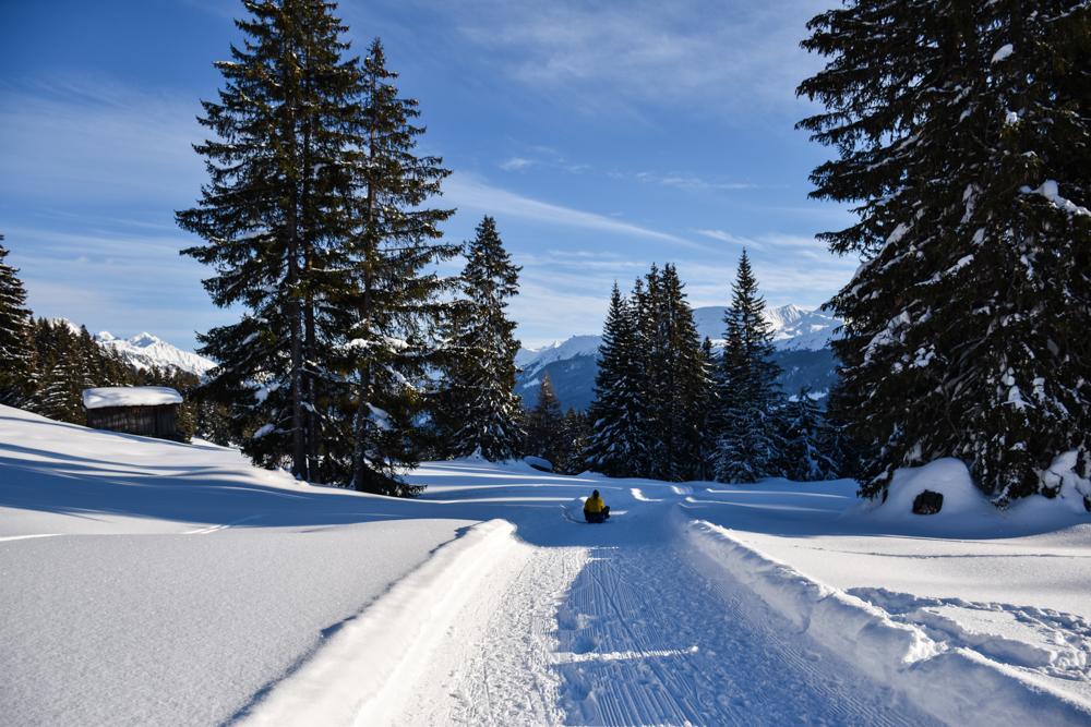 Schlittelweg Pany Prättigau Schweiz mit dem Schlitten ins Tal fahren