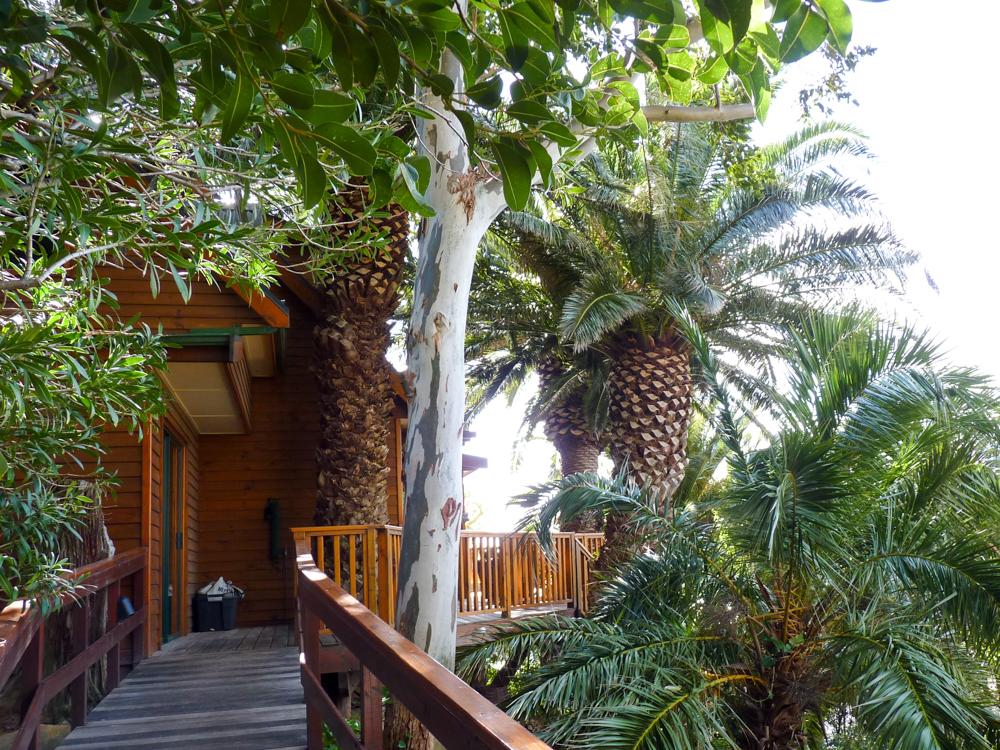 Unterkunftstipps Südafrika Kapstadt Garden Route Lezard Bleu