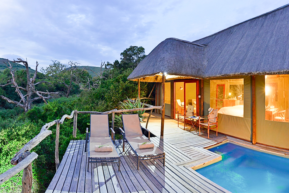 Unterkunftstipps Südafrika Kapstadt Garden Route Shamwari Private Game Reserve Bayethe Tented Lodge