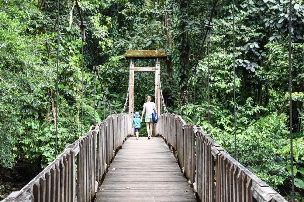 Guadeloupe Sehenswürdigkeiten Highlights Reisetipps Maison de la Foret Parc National de la Guadeloupe